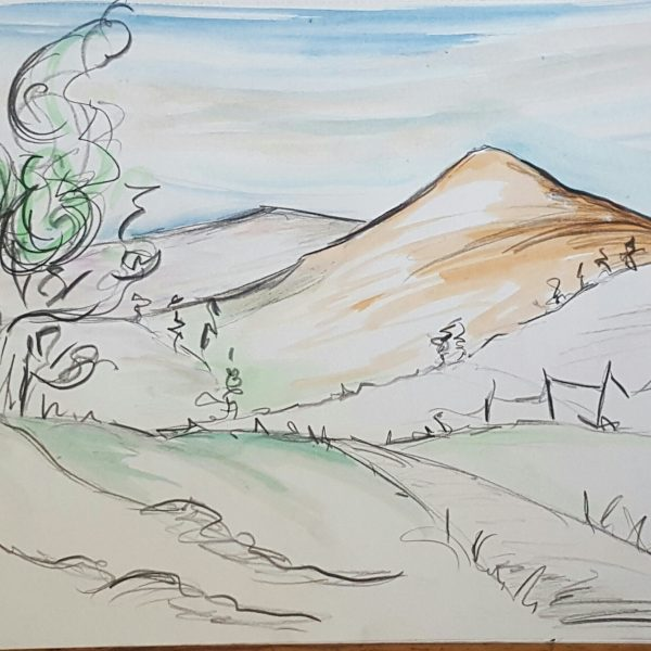 Rolling hills and standing trees