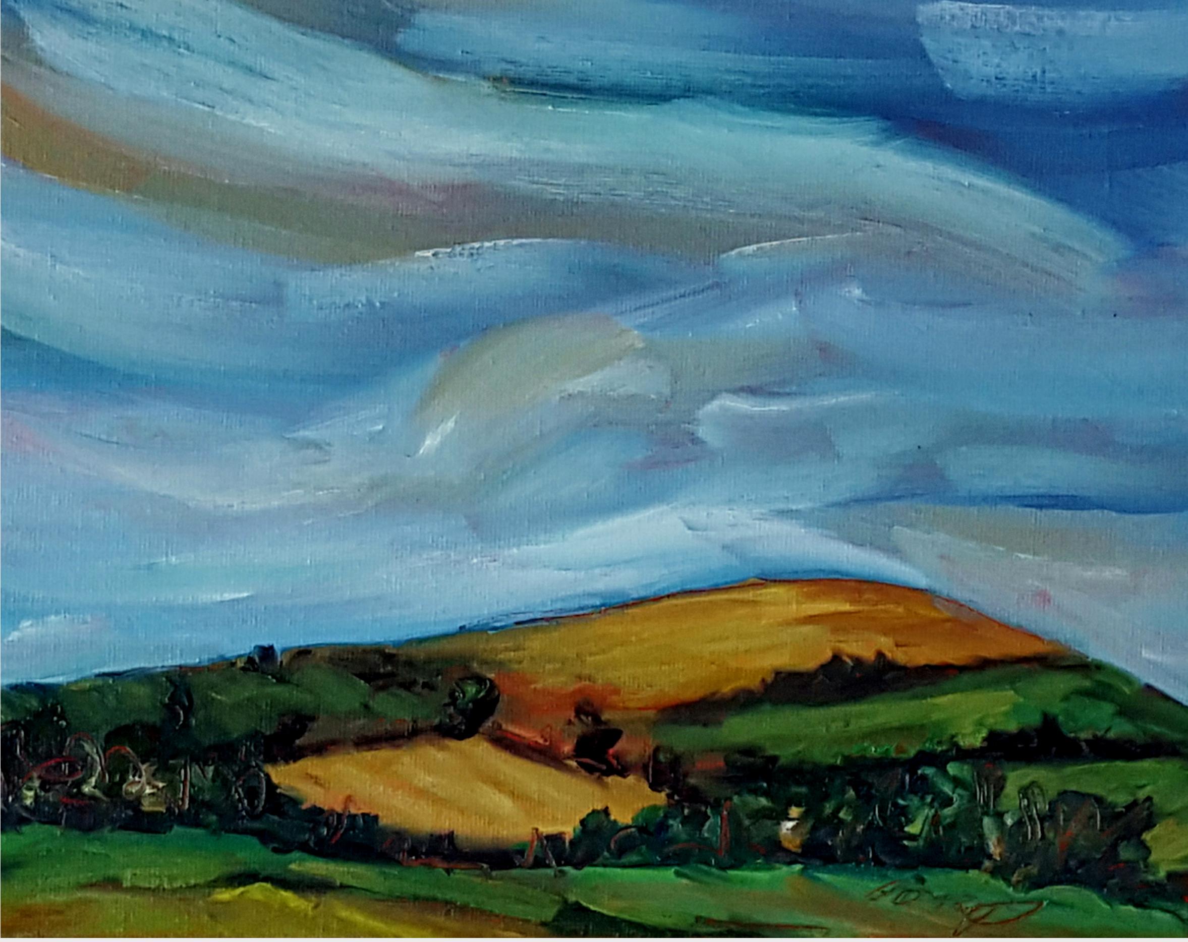 Morning Sky over rolling Wicklow Fields