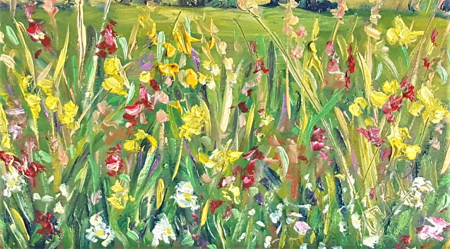 Sunny Summer Meadow